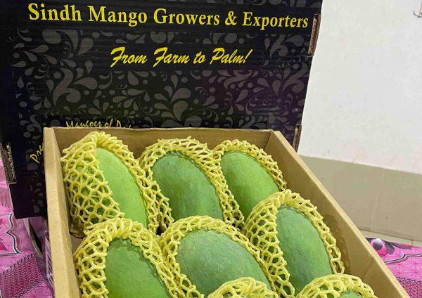 SMGE Mangoes